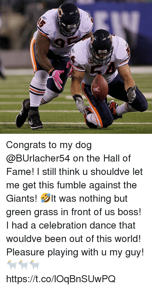 Memes, Giants, and World: Congrats to my dog @BUrlacher54 on the Hall of Fame! I still think u shouldve let me get this fumble against the Giants! 🤣It was nothing but green grass in front of us boss! I had a celebration dance that wouldve been out of this world!  Pleasure playing with u my guy! 🐐🐐🐐 https://t.co/lOqBnSUwPQ
