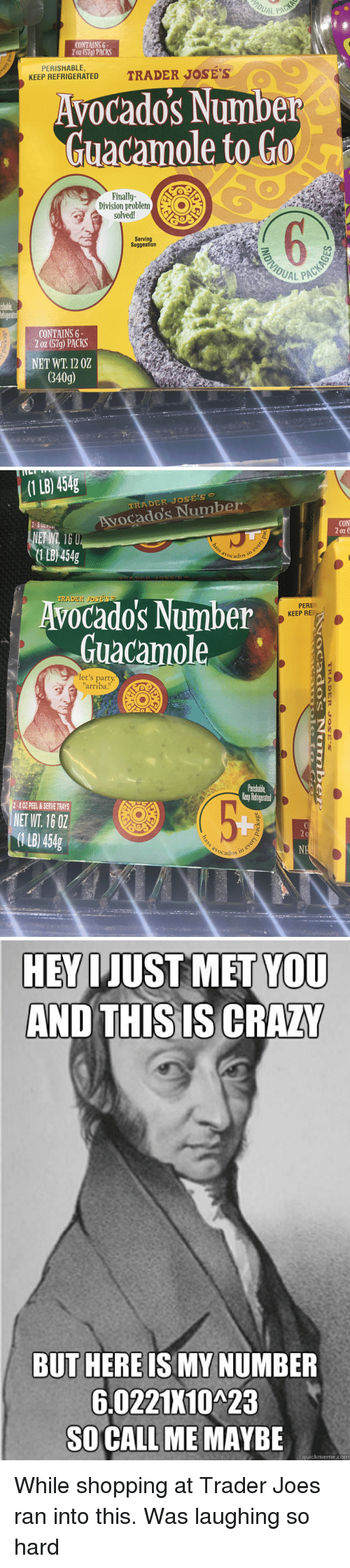 "Call Me Maybe, Guacamole, and Party: CONTAINS 6  2 oz (57g) PACKS  PERISHABLE,  KEEP REFRIGERATED  Avocado's Number  Guacamole to Go  Finally  solved!  Serving  Suggestion  UAL PAC  ishable  CONTAINS 6  2 oz (57g) PACKS  NET WT. 12 02  340g)   (1 LB) 454g  To  RADER JOSES  Avocado's Number  CON  0Z  1LB 454g  avocados  Avocado's Number  Guacamole  TRADER JOSE'S  PERI  KEEP RE  let's party  arriba!""  Paishable  erp Retigeated  2-8 OZ PEEL &SERVE TRAYS  NET WT. 16 0Z  1 B) 454g  b0  Ocados   HEV IJUST MET YOU  AND THIS IS CRAZ  BUT HERE IS MY NUMBER  6.0221K10A23  SO CALL ME MAYBE  quickmeme.com While shopping at Trader Joes ran into this. Was laughing so hard"