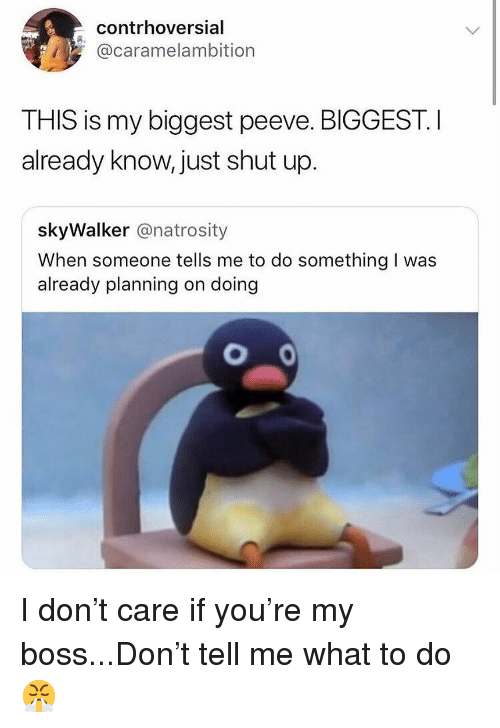 Memes, Shut Up, and 🤖: contrhoversial  @caramelambition  THIS is my biggest peeve. BIGGEST. I  already know, just shut up.  skyWalker @natrosity  When someone tells me to do something I was  already planning on doing I don't care if you're my boss...Don't tell me what to do 😤
