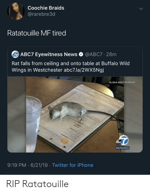 Abc, Braids, and Iphone: Coochie Braids  @rarebre3d  Ratatouille MF tired  ABC7 Eyewitness News  @ABC7 28m  Rat falls from ceiling and onto table at Buffalo Wild  Wings in Westchester abc7.la/2wX5Ngj  ALISHA KENT NORMAN  abc  #abc7eyewitness  9:19 PM 6/21/19 Twitter for iPhone  . RIP Ratatouille