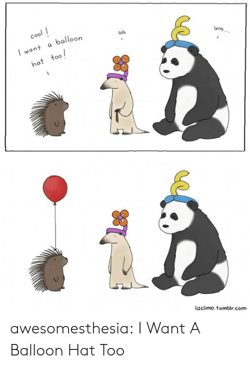 Tumblr, Blog, and Cool: cool  balloon  uh  I want  um...  hat too  lizclimo.tumblr.com awesomesthesia:  I Want A Balloon Hat Too