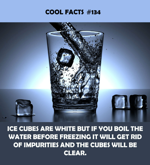 Ice Cubes: COOL FACTS #134  ICE CUBES ARE WHITE BUT IF YOU BOIL THE  WATER BEFORE FREEZING IT WILL GET RID  OF IMPURITIES AND THE CUBES WILL BE  CLEAR.