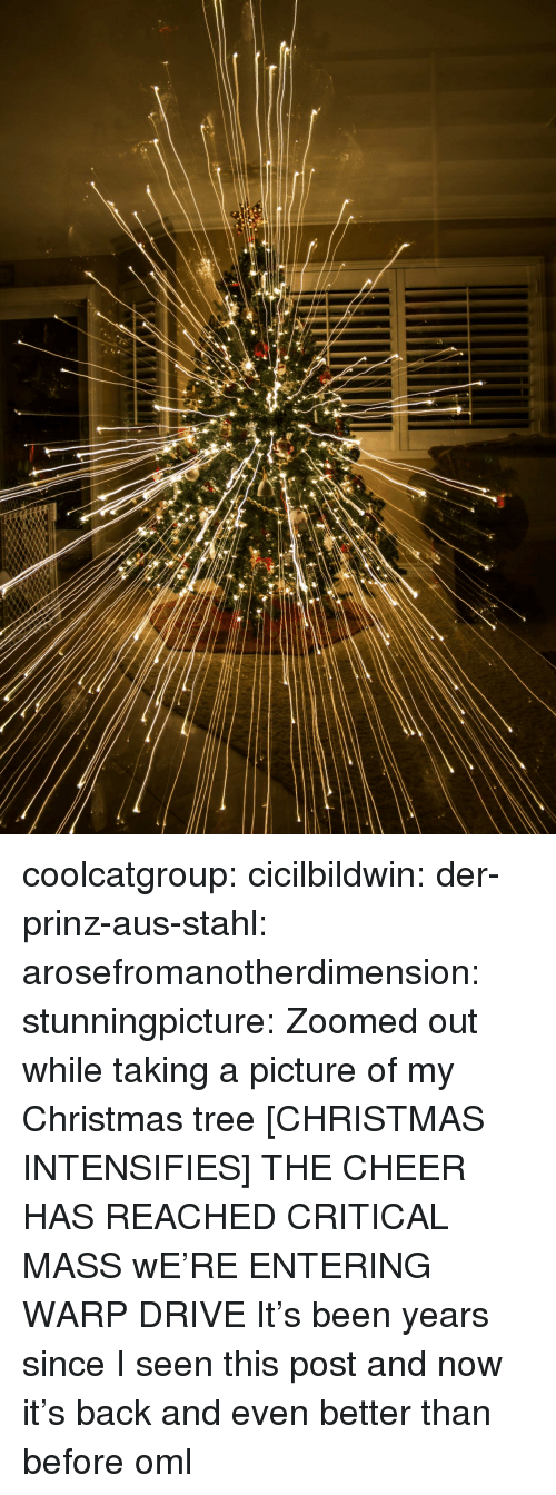 Taking A Picture: coolcatgroup:  cicilbildwin: der-prinz-aus-stahl:  arosefromanotherdimension:  stunningpicture:   Zoomed out while taking a picture of my Christmas tree      [CHRISTMAS INTENSIFIES]      THE CHEER HAS REACHED CRITICAL MASS      wE'RE ENTERING WARP DRIVE    It's been years since I seen this post and now it's back and even better than before oml