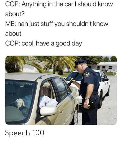 Cool, Good, and Stuff: COP: Anything in the car I should know  about?  ME: nah just stuff you shouldn't know  about  COP: cool, have a good day Speech 100