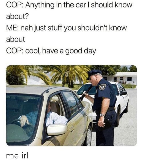 cop: COP: Anything in the car I should know  about?  ME: nah just stuff you shouldn't know  about  COP: cool, have a good day me irl