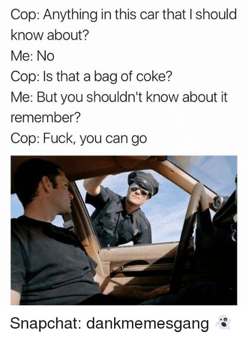 Fuck You, Memes, and Snapchat: Cop: Anything in this car that I should  know about?  Me: No  Cop: Is that a bag of coke?  Me: But you shouldn't know about it  remember?  Cop: Fuck, you can go Snapchat: dankmemesgang 👻