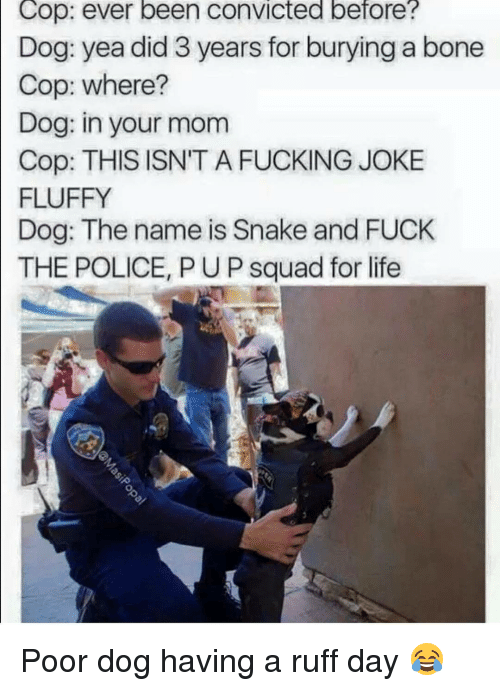 Fuck The Polic: Cop: ever been convicted before?  Dog: yea did 3 years for burying a bone  Cop: where?  Dog: in your mom  Cop: THIS ISN'T A FUCKING JOKE  FLUFFY  Dog: The name is Snake and FUCK  THE POLICE, PUP squad for life Poor dog having a ruff day 😂