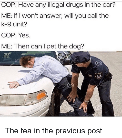 k-9: COP: Have any illegal drugs in the car?  ME: If I won't answer, will you call the  k-9 unit?  COP: Yes.  ME: Then can I pet the dog? The tea in the previous post