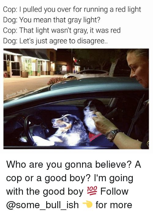 red dog: Cop: l pulled you over for running a red light  Dog: You mean that gray light?  Cop: That light wasn't gray, it was red  Dog: Let's just agree to disagree.. Who are you gonna believe? A cop or a good boy? I'm going with the good boy 💯 Follow @some_bull_ish 👈 for more