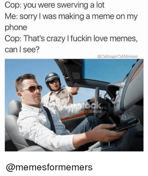 Crazy, Love, and Meme: Cop: you were swerving a lot  Me: sorry l was making a meme on my  phone  Cop: That's crazy I fuckin love memes,  can I see?  @cabbageCatMemes @memesformemers