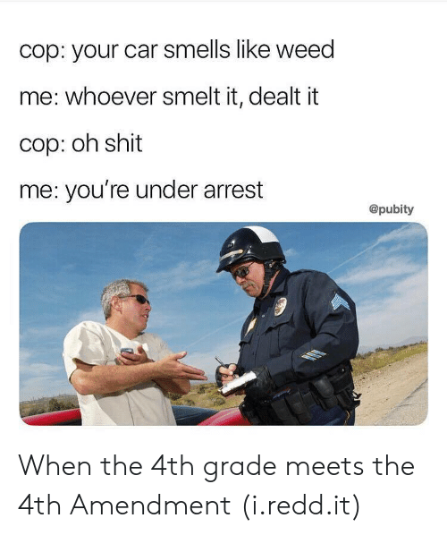 smelt: cop: your car smells like weed  me: whoever smelt it, dealt it  cop: oh shit  me: you're under arrest  @pubity When the 4th grade meets the 4th Amendment (i.redd.it)