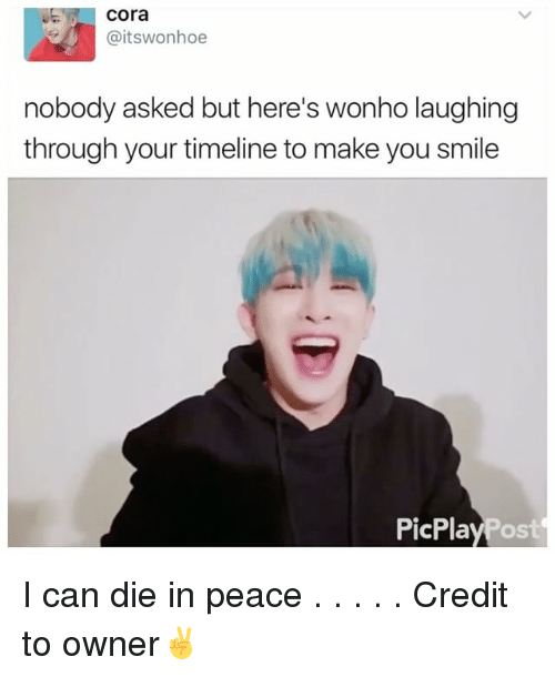 Memes, Smile, and Peace: Cora  Caitswonhoe  nobody asked but here's wonho laughing  through your timeline to make you smile  PicPla I can die in peace . . . . . Credit to owner✌