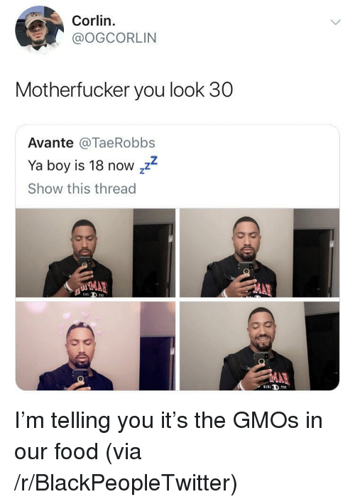 Blackpeopletwitter, Food, and Boy: Corlin.  @OGCORLIN  Motherfucker you look 30  Avante @TaeRobbs  Ya boy is 18 now zz  Show this thread I'm telling you it's the GMOs in our food (via /r/BlackPeopleTwitter)