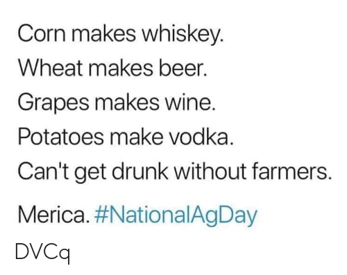 Beer, Drunk, and Memes: Corn makes whiskey.  Wheat makes beer.  Grapes makes wine.  Potatoes make vodka.  Can't get drunk without farmers.  Merica. DVCq