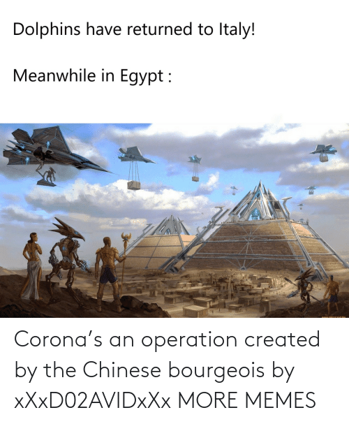 Created: Corona's an operation created by the Chinese bourgeois by xXxD02AVIDxXx MORE MEMES