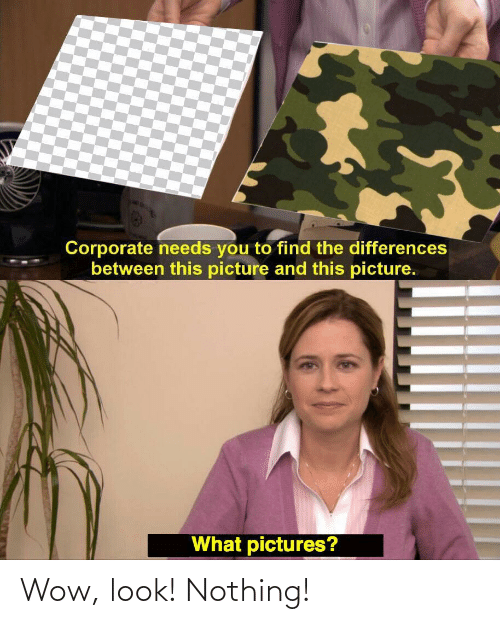 Wow, Pictures, and Corporate: Corporate needs you to find the differences  between this picture and this picture.  What pictures? Wow, look! Nothing!