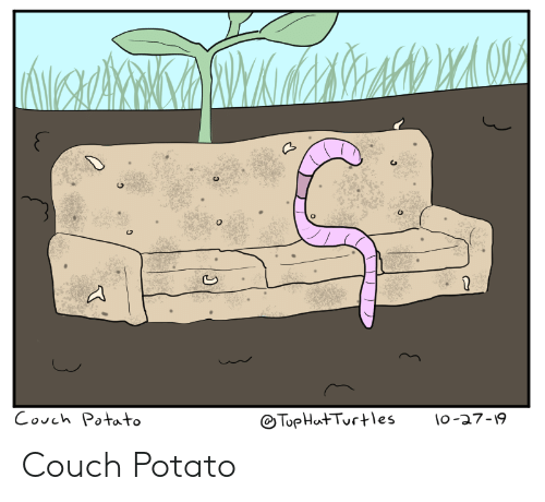 Couch, Potato, and Couch Potato: Couch Potato  TopHat Turtes  lo-a7-19 Couch Potato