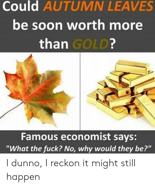 """Soon..., Fuck, and Gold: Could AUTUMN LEAVES  be soon worth more  than GOLD?  Famous economist says:  """"What the fuck? No, why would they be?"""" I dunno, I reckon it might still happen"""