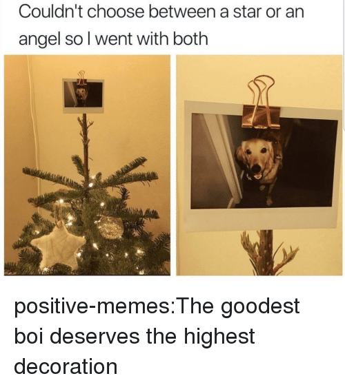 Memes, Target, and Tumblr: Couldn't choose between a star or an  angel so l went with both positive-memes:The goodest boi deserves the highest decoration