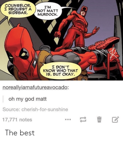 Counselors: COUNSELOR,  T REQUESTA NOT MATT  I'M  SIDEBARMURDOCK.  I DON'T  KNOW WHO THAT  IS, BUT OKAY  noreallyiamafutureavocado:  oh my god matt  Source: cherish-for-sunshine  17,771 notes  区 The best