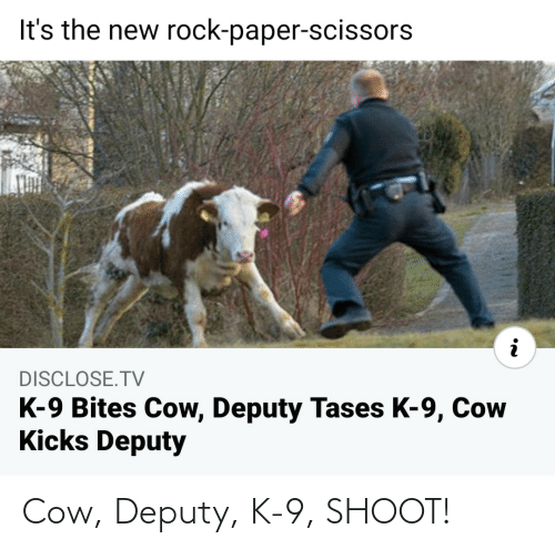 k-9: Cow, Deputy, K-9, SHOOT!