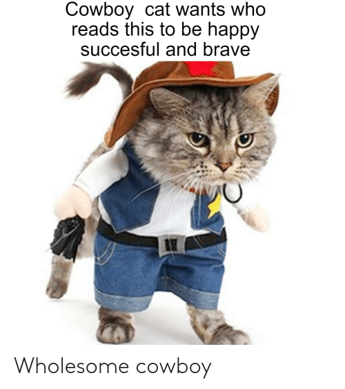 Brave, Happy, and Cowboy: Cowboy cat wants who  reads this to be happy  succesful and brave Wholesome cowboy