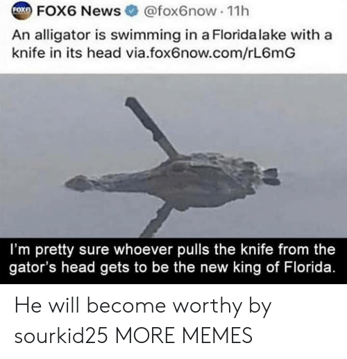 Dank, Head, and Memes: COX FOX6 News  @fox6now 11h  An alligator is swimming in a Florida lake with a  knife in its head via.fox6now.com/rL6mG  I'm pretty sure whoever pulls the knife from the  gator's head gets to be the new king of Florida. He will become worthy by sourkid25 MORE MEMES