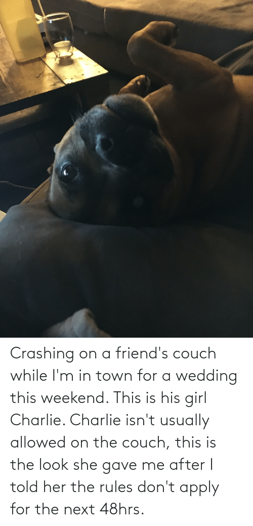 the look: Crashing on a friend's couch while I'm in town for a wedding this weekend. This is his girl Charlie. Charlie isn't usually allowed on the couch, this is the look she gave me after I told her the rules don't apply for the next 48hrs.