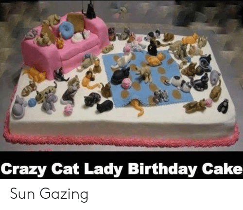 Enjoyable 25 Best Memes About Crazy Cat Lady Birthday Cake Crazy Cat Personalised Birthday Cards Veneteletsinfo