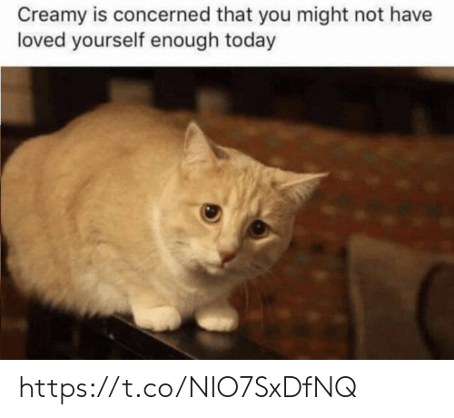 concerned: Creamy is concerned that you might not have  loved yourself enough today https://t.co/NIO7SxDfNQ