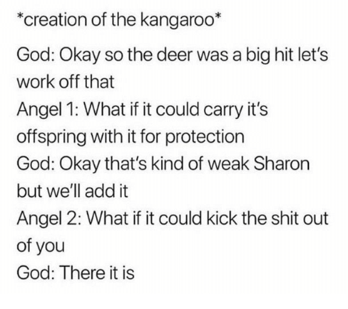 offspring: *creation of the kangaroo*  God: Okay so the deer was a big hit let's  work off that  Angel 1: What if it could carry it's  offspring with it for protection  God: Okay that's kind of weak Sharon  but we'll add it  Angel 2: What if it could kick the shit out  of you  God: There it is