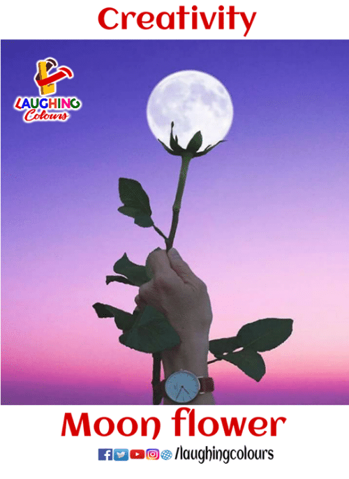 Flower, Moon, and Indianpeoplefacebook: Creativity  AUGHING  Moon flower  ig/laughingcolours