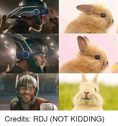 Kidding,  Rdj, and Credits: Credits: RDJ (NOT KIDDING)