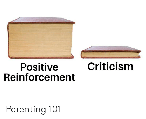 Reinforcement: Criticism  Positive  Reinforcement Parenting 101