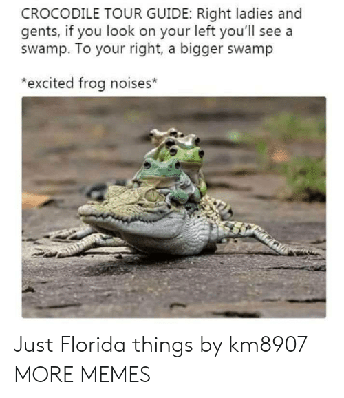 Your Right: CROCODILE TOUR GUIDE: Right ladies and  gents, if you look on your left you'll see a  swamp. To your right, a bigger swamp  *excited frog noises* Just Florida things by km8907 MORE MEMES