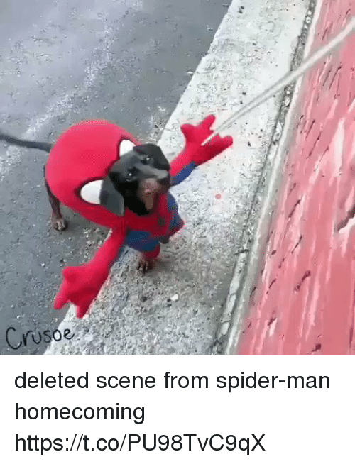 spider-man-homecoming: Cruso deleted scene from spider-man homecoming https://t.co/PU98TvC9qX