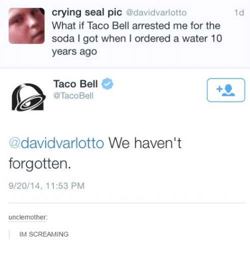 Motheres: crying seal pic  @davidvarlotto  What if Taco Bell arrested me for the  soda l got when l ordered a water 10  years ago  Taco Bell  @Taco Bell  @davidvarlotto We haven't  forgotten.  9/20/14, 11:53 PM  uncle mother:  IM SCREAMING  1d