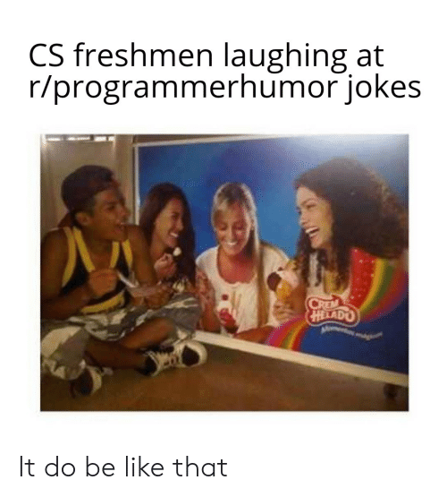 freshmen: CS freshmen laughing at  r/programmerhumor jokes  CREM  HELADO It do be like that