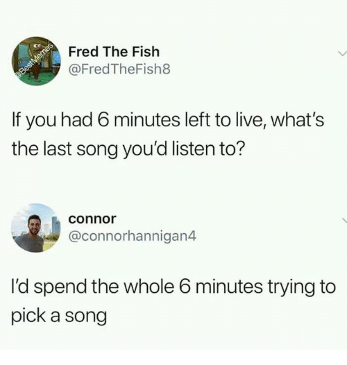 Memes, Fish, and Live: ct  Fred The Fish  @FredTheFish8  If you had 6 minutes left to live, what's  the last song you'd listen to?  conno  @connorhannigan4  I'd spend the whole 6 minutes trying to  pick a song