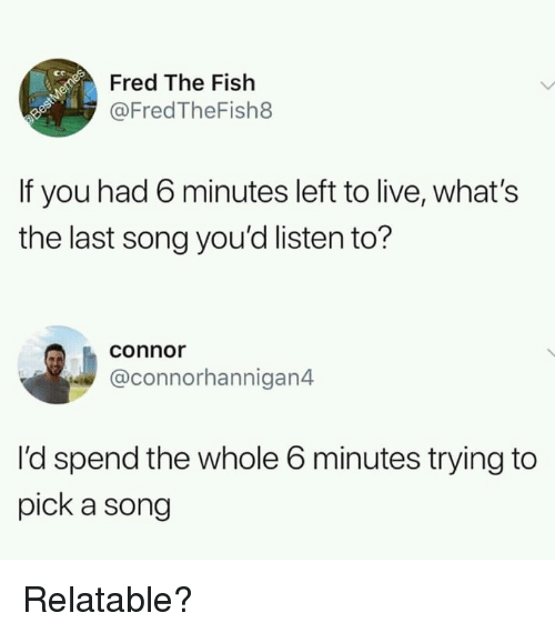Fish, Live, and Relatable: ct  Fred The Fish  @FredTheFish8  If you had 6 minutes left to live, what's  the last song you'd listen to?  conno  @connorhannigan4  I'd spend the whole 6 minutes trying to  pick a song Relatable?