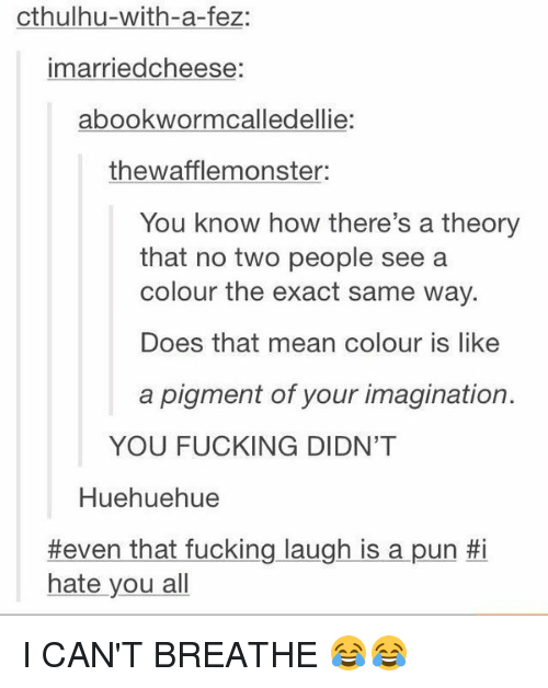 I Hate You All: cthulhu-with-a-fez:  imarriedcheese  abookwormcalledellie:  thewafflemonster:  You know how there's a theory  that no two people see a  colour the exact same way.  Does that mean colour is like  a pigment of your imagination.  YOU FUCKING DIDN'T  Huehuehue  #even that fucking laugh is a pun  #i  hate you all I CAN'T BREATHE 😂😂