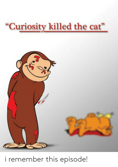 "Dank Memes, Cat, and Remember: ""Curiosity killed the cat"" i remember this episode!"