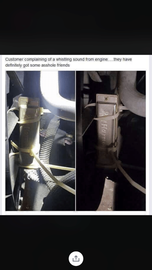 Definitely, Friends, and Asshole: Customer complaining of a whistling sound from engine....they have  definitely got some asshole friends  Harm