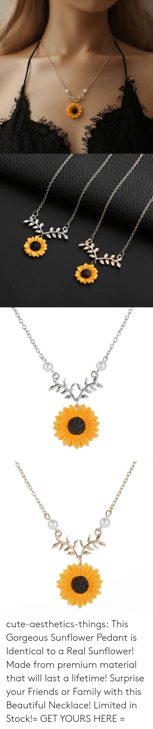Pedant: cute-aesthetics-things:  This Gorgeous Sunflower Pedant is Identical to a Real Sunflower! Made from premium material that will last a lifetime! Surprise your Friends or Family with this Beautiful Necklace! Limited in Stock!= GET YOURS HERE =