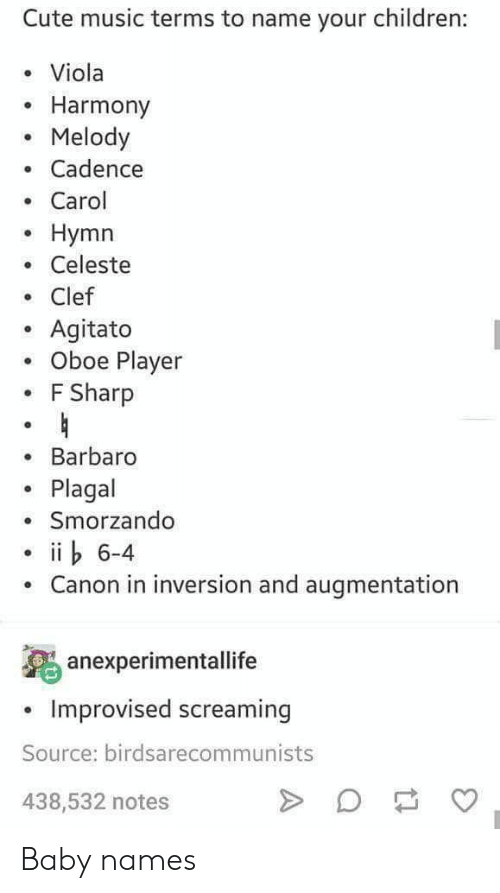 Baby Names: Cute music terms to name your children:  Viola  Harmony  Melody  Cadence  . Carol  o Hymn  . Celeste  Clef  . Agitato  . Oboe Player  F Sharp  Barbaro  Plagal  Smorzando  6-4  Canon in inversion and augmentation  anexperimentallife  Improvised screaming  Source: birdsarecommunists  438,532 notes Baby names
