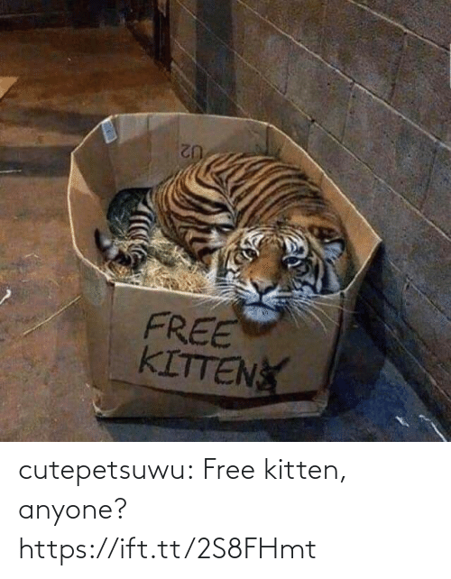 kitten: cutepetsuwu:  Free kitten, anyone? https://ift.tt/2S8FHmt