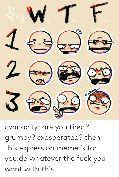 tired: cyanacity:  are you tired? grumpy? exasperated? then this expression meme is for you!do whatever the fuck you want with this!