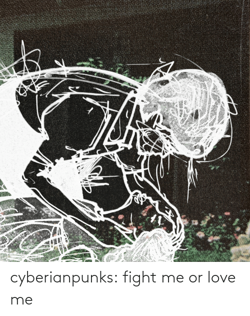 fight me: cyberianpunks:  fight me or love me