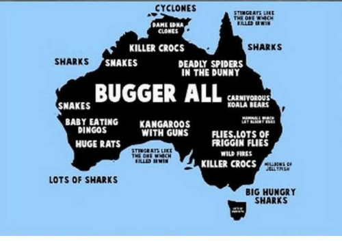 carnivorous: CYCLONES  STINGRATS LIKE  DAME EDNA  CLONES  SHARKS  KILLER CROCS  SHARKS  SNAKES  DEADLY SPIDERS  IN THE DUNNY  BUGGER ALL  CARNIVOROUS  KOALA BEARS  SNAKES  BABY EATING  KANGAROOS  DINGOS  WITH GUNS  FLIES,LOTS OF  FRIGGIN FLIES  HUGE RATS  STINGERT LIKE  WILDFIRES  KILLER CROCS  LOTS OF SHARKS  BIG HUNGRY  SHARKS