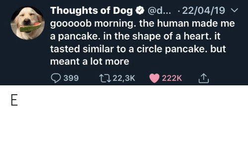 Similar: @d... .22/04/19  Thoughts of Dog  gooooob morning. the human made me  a pancake. in the shape of a heart. it  tasted similar to a circle pancake. but  meant a lot more  399  t22,3K  222K E